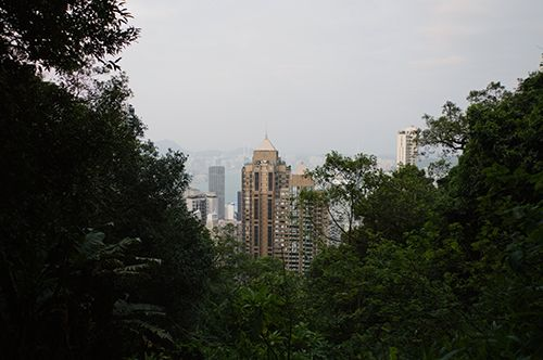 Hiking to Victoria Peak via Old Peak Road